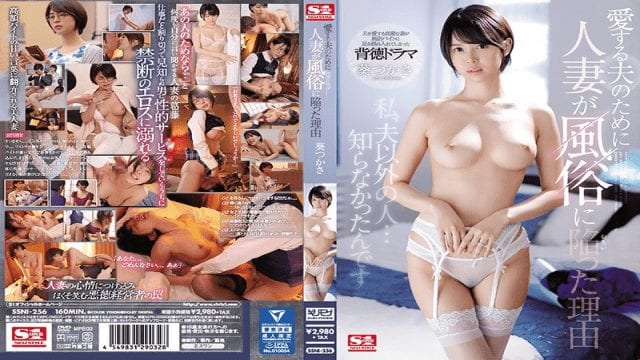 s1no-1style-ssni-256-reason-why-the-married-woman-came-into-customs-for-her-dear-husband-aoi-tsukasa_1531706855